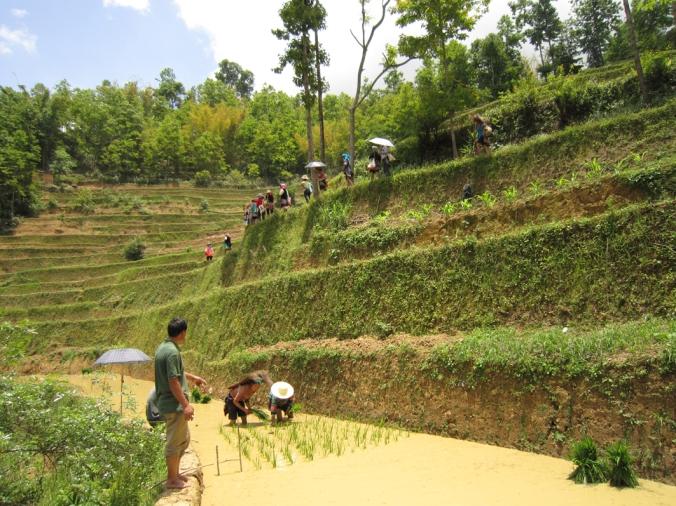 HUMANA CHINA FARMERS SHALATUO
